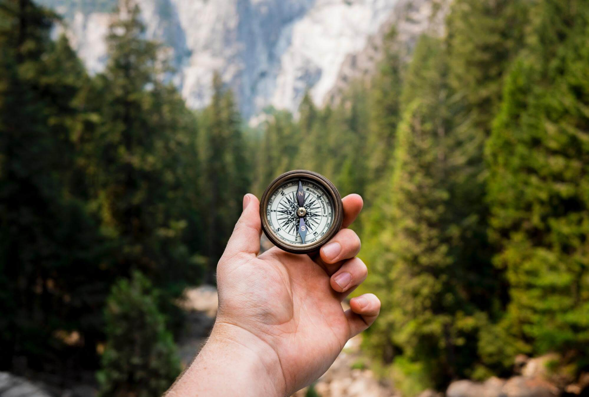 compass in the wilderness
