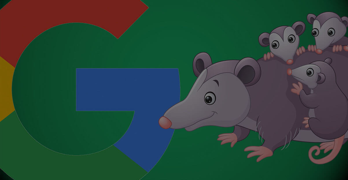 Google Possum Update: The Possum, the Hawk and your local SEO